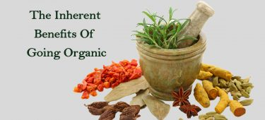 The Inherent Benefits Of Going Organic